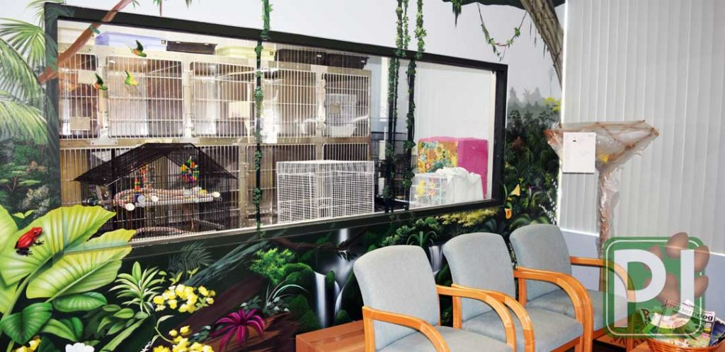 Bird & Exotic Hospital 2