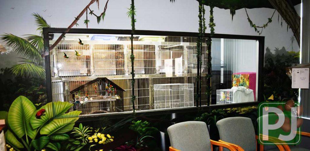 Bird & Exotic Hospital 3