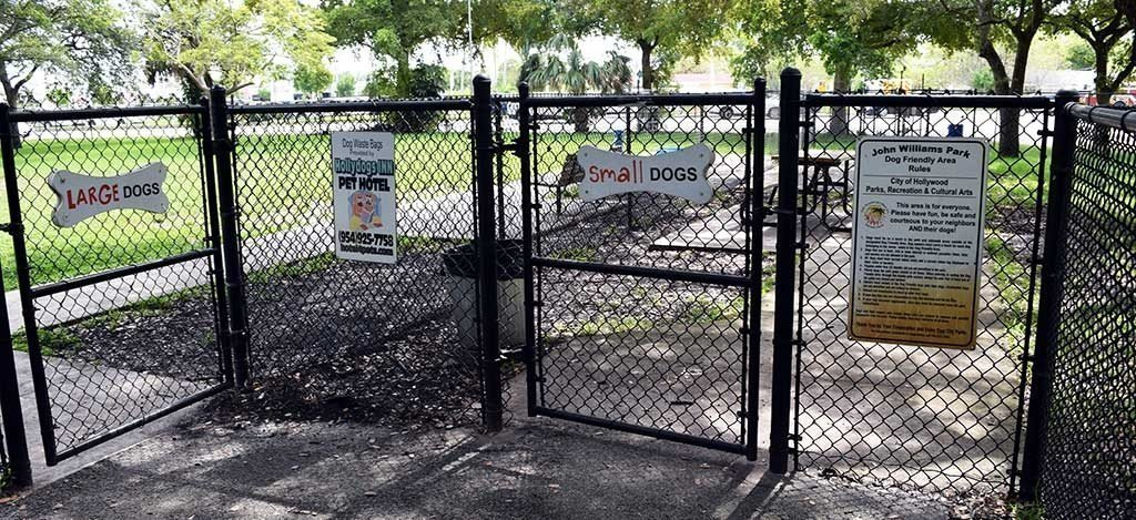 Dog Park at John Williams Park 3