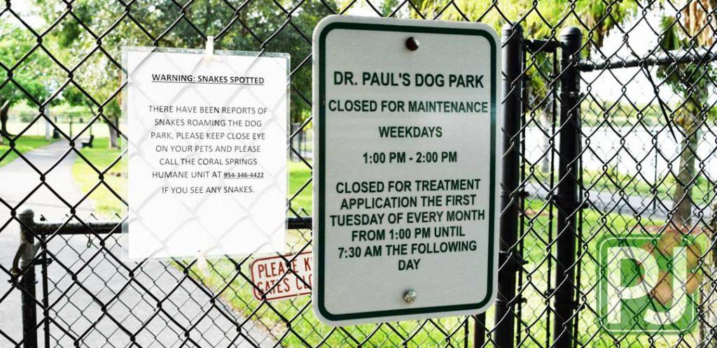 Dr Pauls Dog Park 13