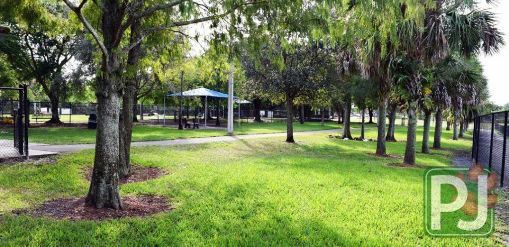 Dr Pauls Dog Park 15