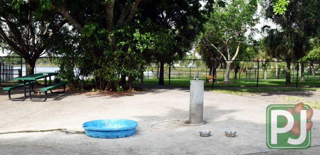 Dr Pauls Dog Park 4