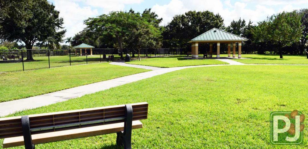Wellington Dog Park Medium Dog 3