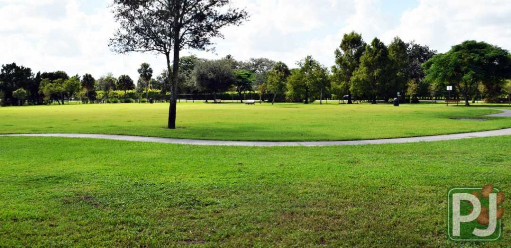 Wellington Dog Park Medium Dog 6