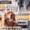 Pet Junction July 15_October 15 2020-1
