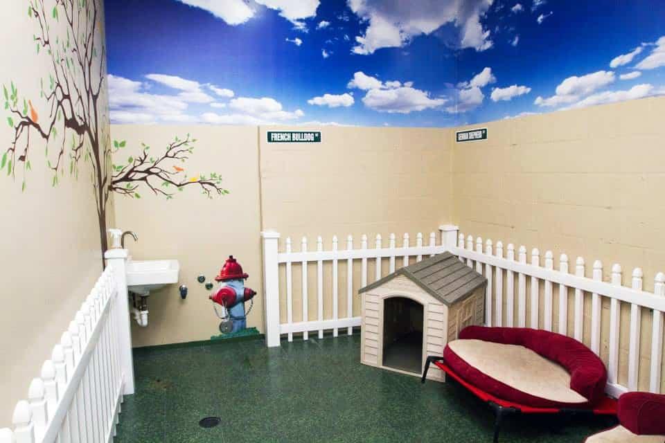 Sunset Animal Hospital Inside 5