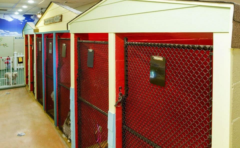 Sunset Animal Hospital Inside 6