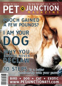 Pet Junction January 15 2020 Cover